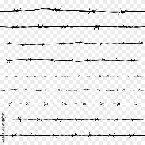 Fotomural Set of Steel Rusty Barbwire Seamless Pattern