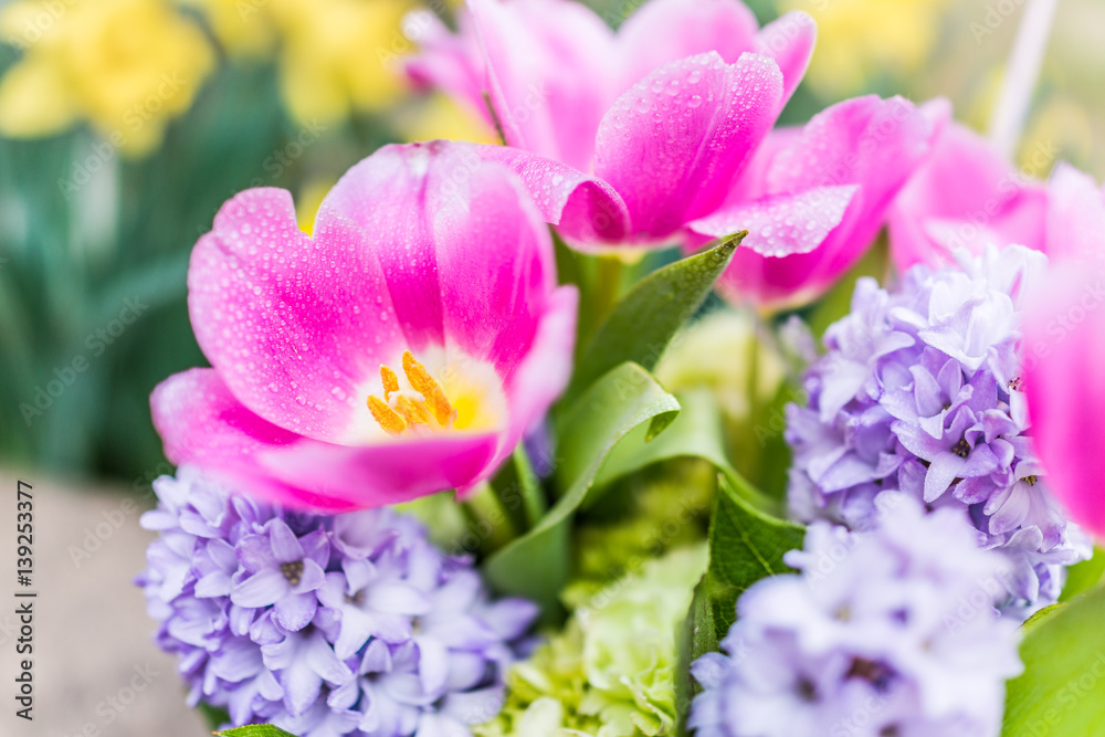 Open Pink Tulip Bouquet With Blue Purple Hyacinth Flowers And Water