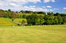 Cricket On A Summer Evening
