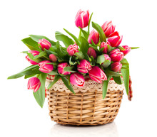 Red Tulip Flowers In A Basket ...