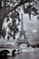 Obraz na SzkleMonochrome vintage view of Eiffel tower framed with the tree, Paris