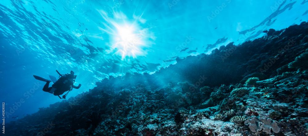 Fototapeta Rays of sunlight shining into sea, underwater view