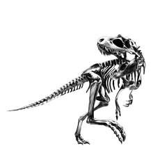 Dinosaur Skeleton Tyrannosauru...