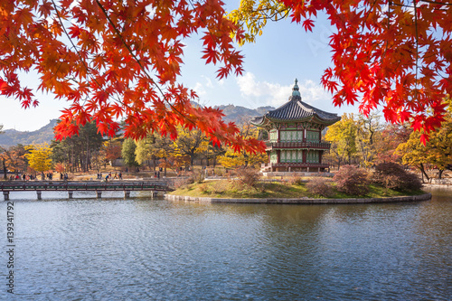 gyeongbokgung palace in autumn with blur maple in foreground, Seoul, South Korea Poster