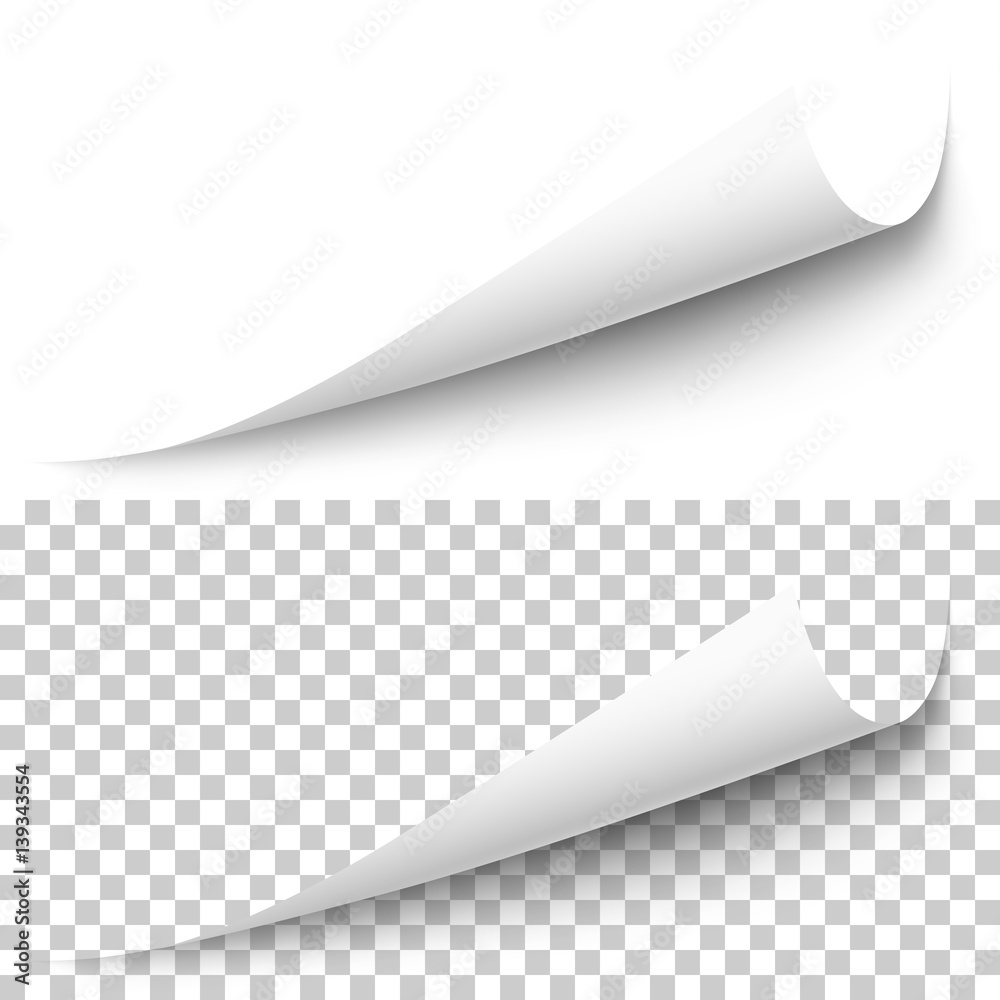 Fototapety, obrazy: Vector realistic white paper corner with shadow on transparent background. 3D page corner curled. Blank sheet of paper. Design element.