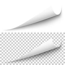 Vector Realistic White Paper C...