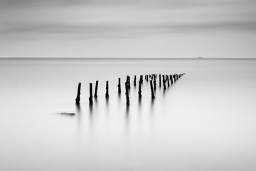 Panel Szklany PodświetlaneBlack and white image of an old pier pillars in tagus river
