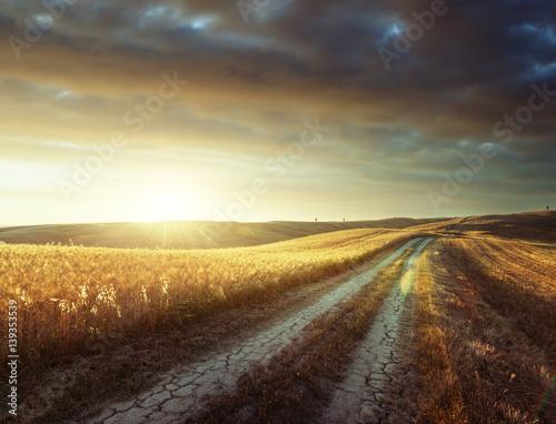 Canvas Prints Honey Tuscany sunny road, Italy
