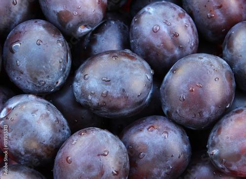 Fototapeta Fresh plums with water droplets obraz na płótnie