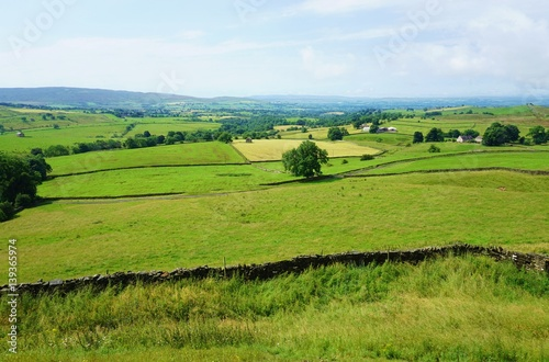 Foto op Canvas Pistache Stone walls in fields in an English countryside landscape
