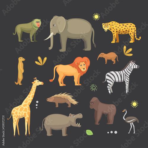 Photo African animals cartoon vector set