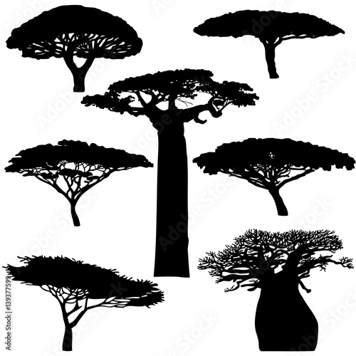Photo  Black silhouette various of African trees on a white background - vector