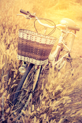 Fotobehang Fiets Vintage Bicycle with Summer grassfield