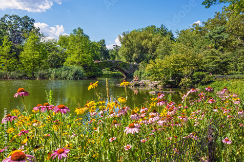 Stampa su Tela Central Park Duck Pond