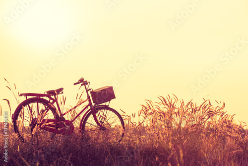 Türaufkleber Fahrrad beautiful landscape image with Bicycle at summer grass field.classic bicycle,old bicycle style for greeting Cards ,post card