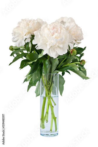 Beautiful white flowers peonies in a vase Canvas Print
