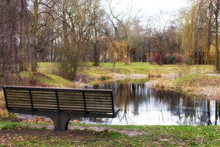 Small Pond In The Middle Of The Park With A Park Bench In Front