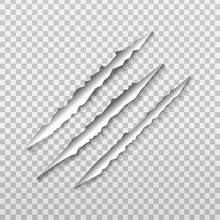 Vector Claw Scratch On The Transparent Background.