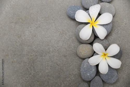 Spoed Fotobehang Spa Two frangipani with spa stones on grey background.