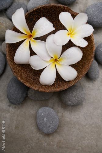 Staande foto Spa Three frangipani in wooden bowl with spa stones on grey background.
