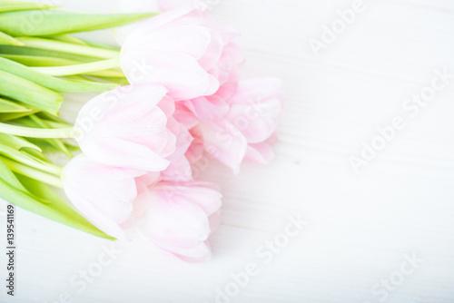 bukiet-rozowych-tulipanow-na-bialym-tle