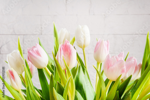 Wall Murals Tulip bouquet of white and pink tulips on a light background