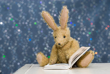 Cute Child's Toy Rabbit Readin...