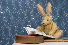 Cute Child's Toy Rabbit Reading At Story Time.