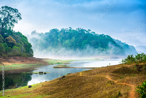 beautiful landscape with wild forest and river with fog in India. Periyar National Park, Kerala, India