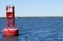 Red Buoy With Cormorants
