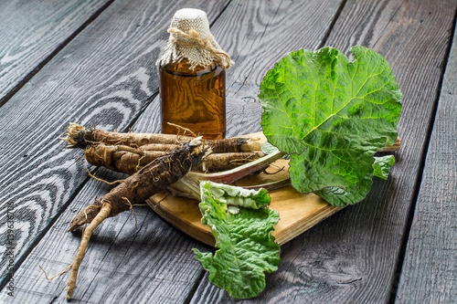 Stampa su Tela Roots and leaves of burdock (Arctium lappa), burdock oil in bottle