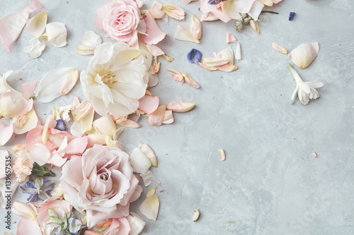 Fotobehang Bloemen Composition of flowers on grey background