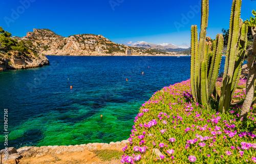 krajobraz-kaktusy-i-kwiaty-na-tle-blekitnej-wody-w-miescie-port-d-antrax-na-majorce