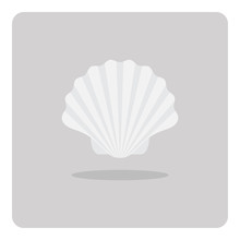Vector Of Flat Icon, Scallop Shell On Isolated Background