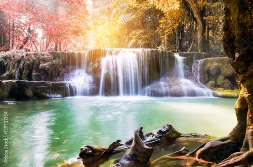 Küchenrückwand aus Glas mit Foto Wasserfalle Waterfall tropical rainforest colorful