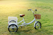 Little White Tricycle In The M...