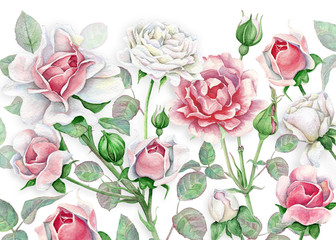 Panel Szklany Kwiaty Watercolor floral background with white and pink roses