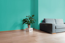 Room Interior With Bright Wooden Floor With Aquamarine Wall, Modern Comfortable Sofa And Plant On Wooden Box