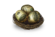 Egg Shaped Money In Nest On White Background
