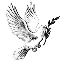 Flying White Dove With Olive Branch As A Symbol Of Peace. Retro Styled Black And White Ink Drawing