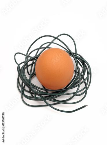 Ei in Nest aus Draht, Symbol für Tierhaltung - Buy this stock photo ...
