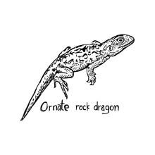Ornate Rock Dragon - Vector Il...