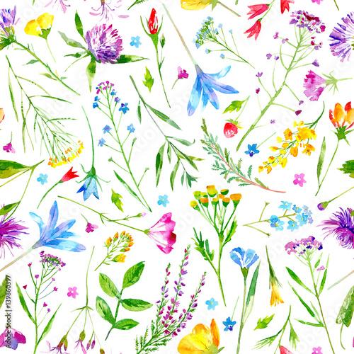 kwiatowy-wzor-dzikich-kwiatow-i-ziol-na-bialym-tle-butterka-chaber-koniczyna-bluebell-niezapominajka-wyka-trawa-lobelia-kwiaty-przebisnieg-ilustracja-akwarela-recznie-rysowane