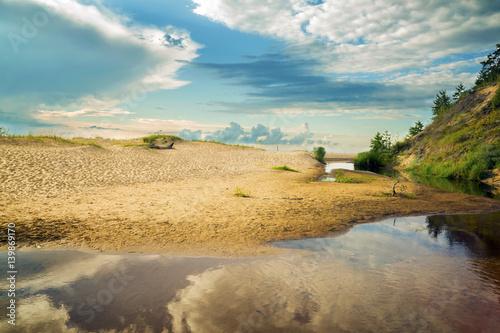 Staande foto Strand Beautiful summer landscape of the coast of the Baltic Sea