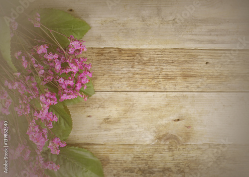 Fotografie, Obraz  Dried flowers called broom bloom or bloom weed in pink on a rustic background