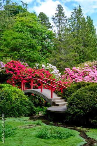 Japanese garden in spring - 139885516