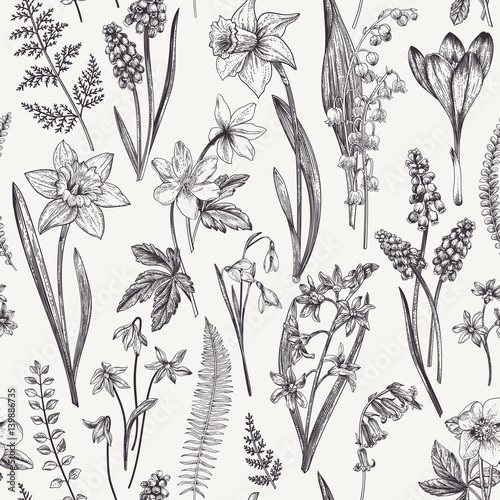 Fototapeta Seamless floral pattern. obraz na płótnie