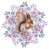 Squirrel and flowers. Watercolor illustration. Isolated on white - 139888939
