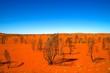 canvas print picture - red dirt desert australia outback horizon