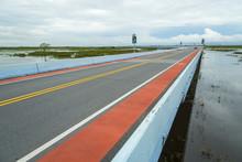 Long Bridge In Wetland Site